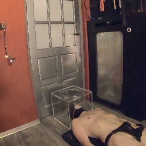toilet service